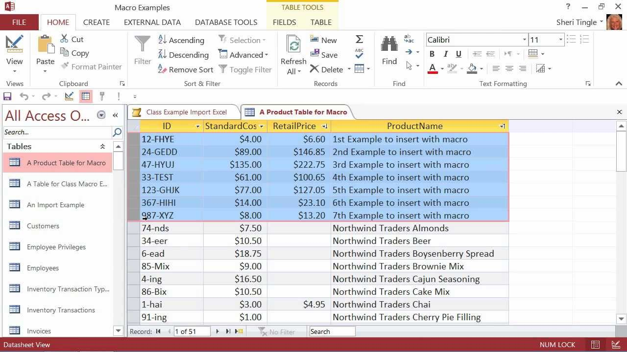 ms access macro tutorial pdf