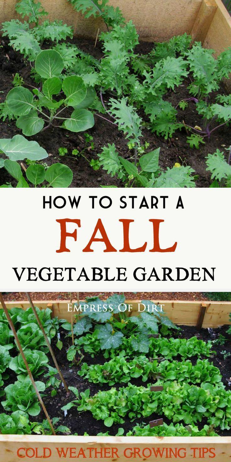 winter veggie planting guide