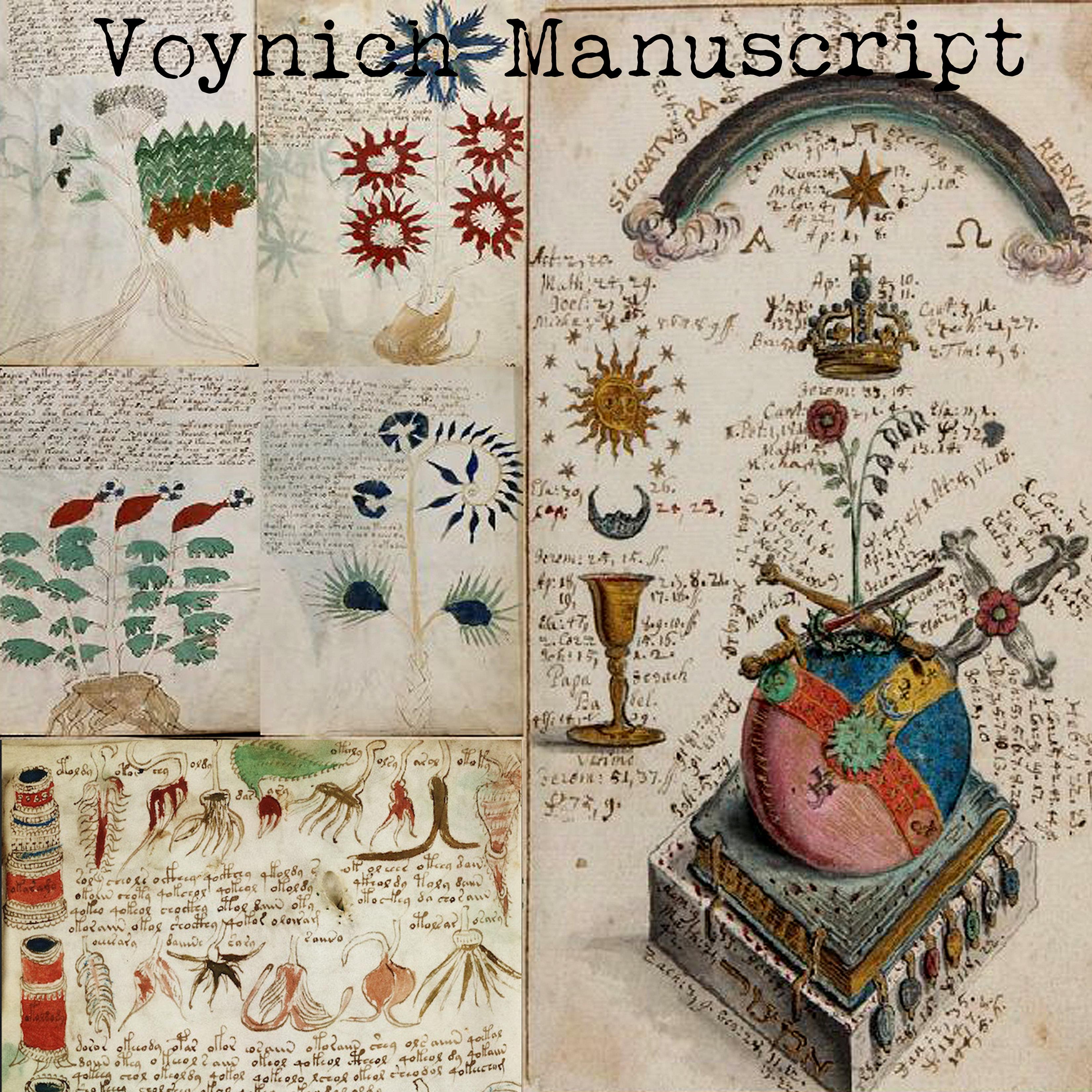 voynich manuscript pdf download
